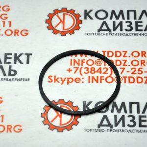 Уплотнительное кольцо 4094865, 4094865CCEC. Для двигателя Cummins KTA19, KTTA19, KTA38, KTA50. Деталь производства Cummins CCEC.